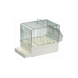 Petite cage de chant