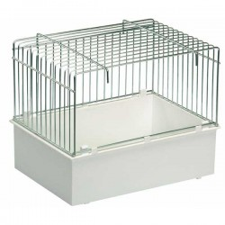 Baignoire perruches et perroquets