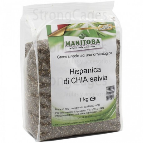 Graines de Chia Manitoba