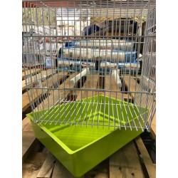 cage bengalino quadra