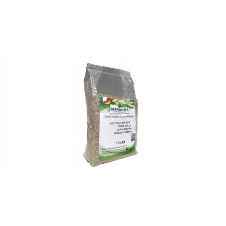 Manitoba Graines de Laitue Blanche 1kg