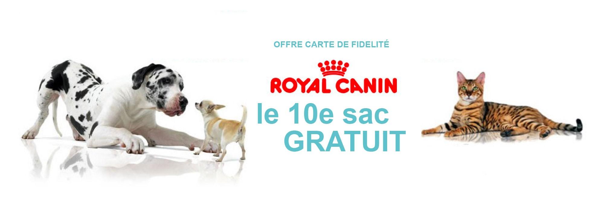 promotion sac croquettes pour chiens